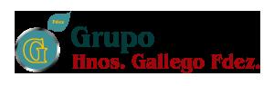 Grupo Hnos. Gallego Fdez.